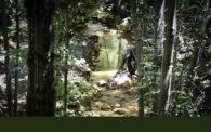 Corona and Twin Peaks Mines Drainage Treatment Project
